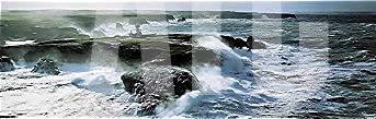 - ArtToCanvas 56W x 17H inches : Coup de Vent sur les Poulains by Phillip Plisson - Canvas w/Brushstrokes