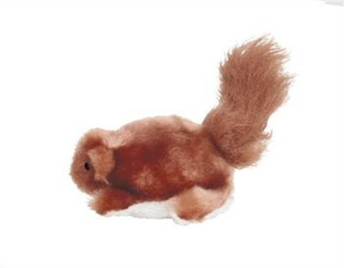 KONG Beaver Dog Toy, Small, My Pet Supplies