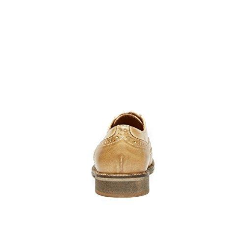 Ville à Lacets Daniel de Chaussures Beige Beige Frank Oxford Femme Pour ZXqITxxO