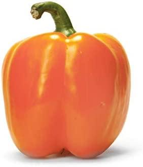 Pepper Bell Orange Conventional, 1 Each