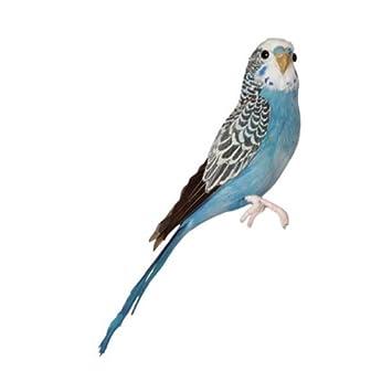 amazon バード セキセイインコ ブルー birds budgie blue puebco 置物