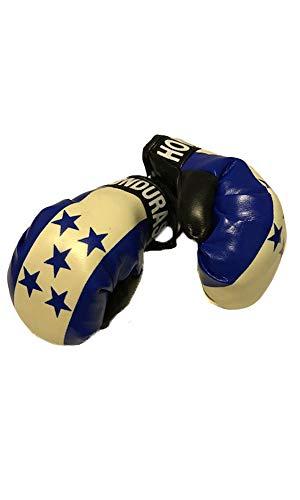 Flag Mini Small Boxing Gloves to Hang Over Car Automobile Mirror - Americas (Country: Honduras)