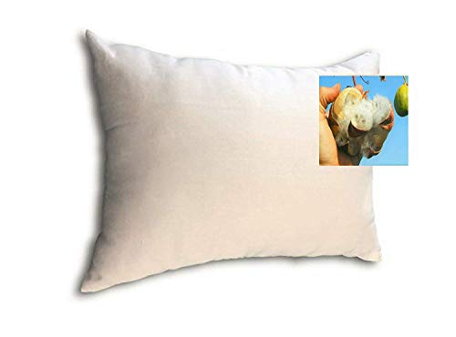 Kapok Fiber Filled Premium Standard Size Medium Filled Pillow with Organic Cotton Covering