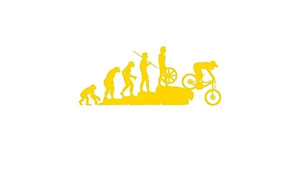 turkeybaby Etiqueta Engomada del Coche, Funny Human Evolution MTB Bike Car Calcomanías Reflectantes del Vehículo Decoración De La Etiqueta Engomada: Amazon.es: Deportes y aire libre