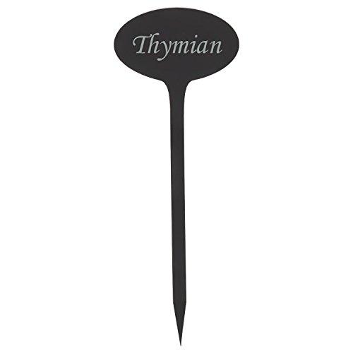 Acrylglas Pflanzschilder Oval grau transparent - Gartenstecker, Kräuterschilder, Pflanzenstecker - Auswahl + Wunschname, Pflanzenname:Thymian