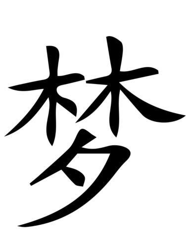 Amazon Dream Chinese Symbol Car Sticker White Color Decal
