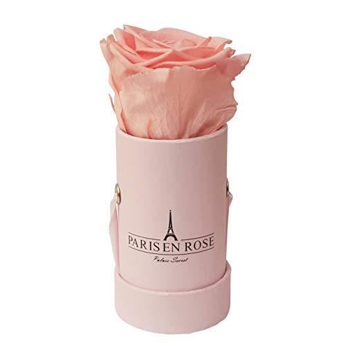 (PARIS EN ROSE Palais-Secret Rose Box, Real Roses (Preserved), Premium Cardboard Box, Satin Ribbon, Pink,)