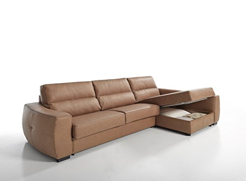 Roy Leather Italian Sectional Sofa Bed Sleeper Left Right Universal Flipping Sides Storage (Italian Leather Beds)
