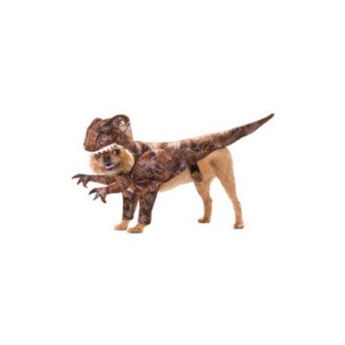 Raptor Pet Pet Costume - Large]()
