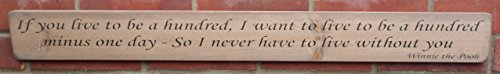 (Thorness Shabby chic wooden sign If you live to be a hundred.Winnie the the Pooh)