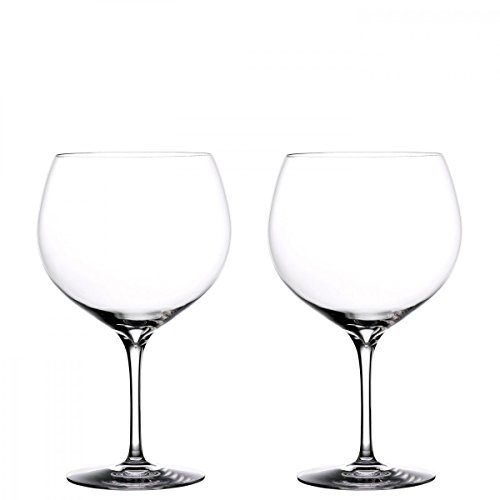 Waterford Elegance Balloon Gin Set of 2