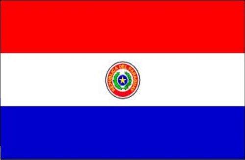 Gran Bandera de Paraguay 150 x 90 cm Satén América del Sur Flag Durabol.: Amazon.es: Hogar