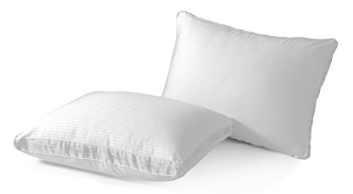 Beautyrest Firm Support NaturesLoft Pillow, Set of 2, King