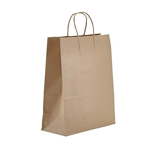 PTP BAGS 10'' x 5'' x 13'' Natural Food Service Kraft Paper Bags with Handles, Pack of 250