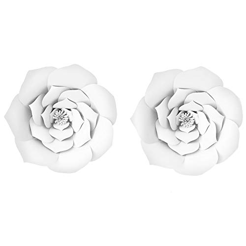 - LG-Free 8inch 10inch 12inch Paper Pom Poms Decorative Paper Flower Hanging Rose Flower Balls DIY Paper Handmade Craft for Wedding,Baby Shower,Birthday,Party Decorations,Home (2pcs, 16inch-White)