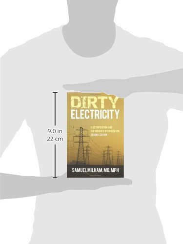 Dirty Electricity: Electrification and the Diseases of Civilization                         (Paperback)