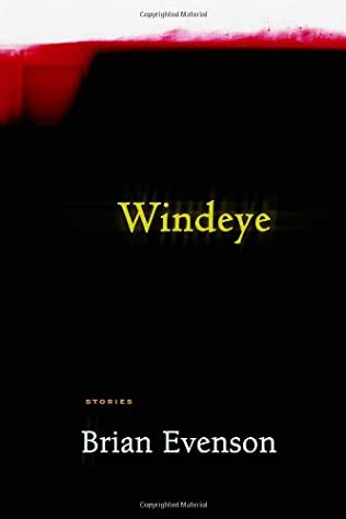 book cover of Windeye
