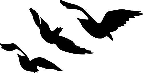 Divergent Tris Raven Tattoo Flying Birds Vinyl Wall Decal