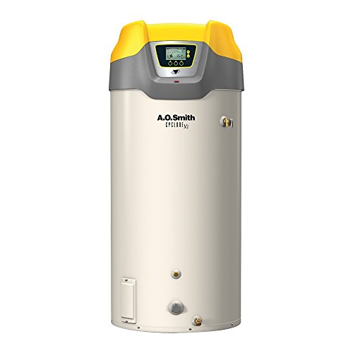 AO Smith BTH-199 Tank Type Water Heater with Commercial Natural Gas by AO Smith