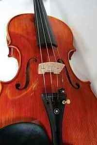 D Z Strad Viola #200 16'' with Case and Bow by D Z Strad