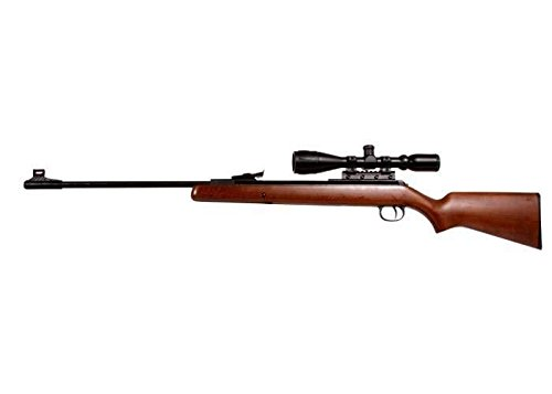 Diana RWS 34 Striker Combo air rifle
