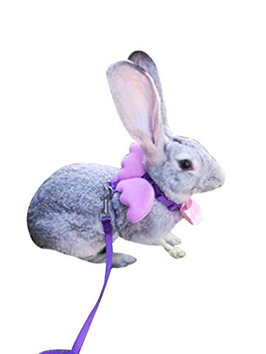FunPetLife Adjustable Rabbit Harness and Leash Set-Angel for sale  Delivered anywhere in USA