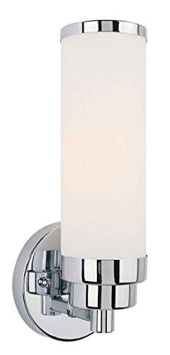 Buy fish tank chrome light