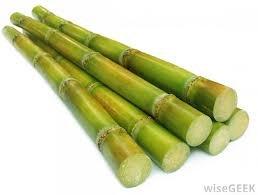 (Fresh Sugar Cane (5lb))