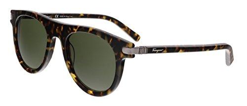 Salvatore Ferragamo SF787/S 214 Havana Wayfarer - Ferragamo Sunglasses Men's