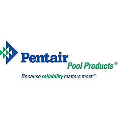 Pentair 178578 Almond Bottom Tank Assembly Replacement Pool and Spa Filter: Garden & Outdoor