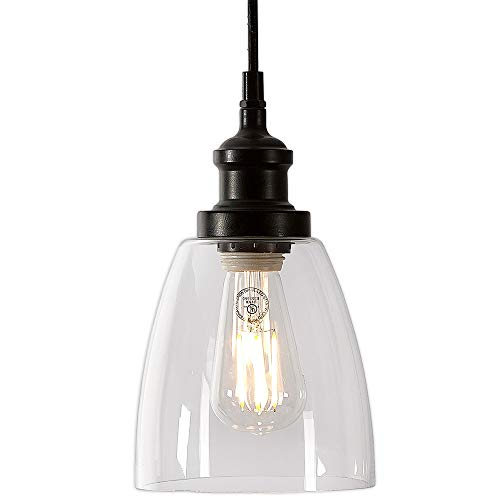 Clear Curved Glass Pendant Hanging Light Fixture Black Finish with LED Edison Bulb