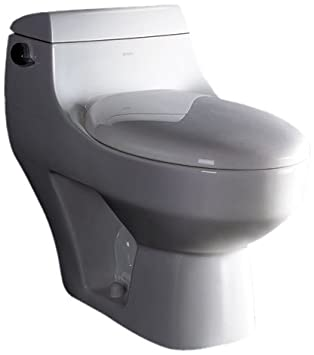 Great EAGO TB108 Ultra Low Flush Eco Friendly Toilet, 1 Piece