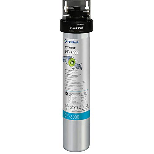 H-1200 everpure water filter