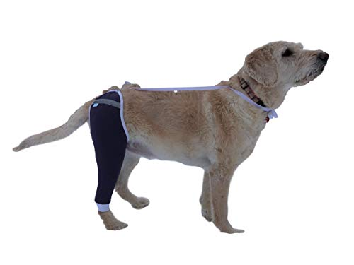 (After Surgery Wear Hip and Thigh Wound Protective Sleeve for Dogs. Dog Recovery Sleeve. Recommended by Vets Worldwide (XX-Large, Purple))