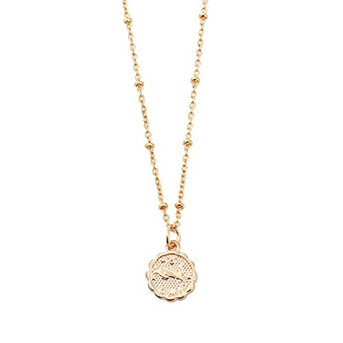 AEVIO Constellation Necklace Zodiac Horoscope Medallion Pendant Jewelry for Women and Girls, Trend All-Match for Girls and Ladies(Taurus) (Best Zodiac Sign Matches)