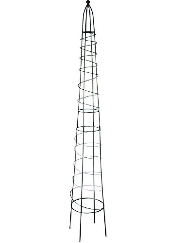 地殻ほかに神秘サンカ 支柱 オベリスクタワー 2100