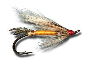 Rusty Ratフライ釣りフライ 12 Size 6 - 12 Pack 6 Pack B00KD8QW60, トレカ通販 トレトク:fb9f913b --- sharoshka.org
