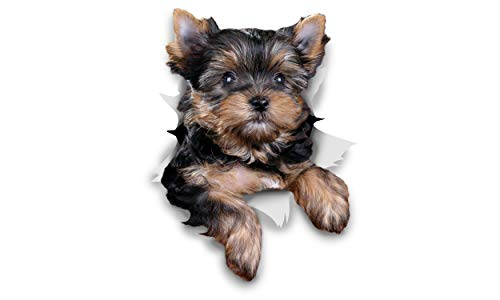 Winston & Bear 3D Dog Stickers - 2 Pack - Cute Yorkshire Terrier for Wall, Fridge, Toilet and More - Retail Packaged Yorkshire Terrier Dog Stickers - Yorkie Car ()