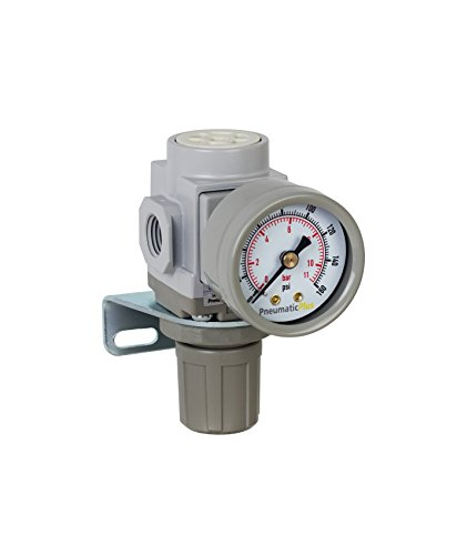 PneumaticPlus SAR200-N02BG Miniature Compressed Air Pressure Regulator 1/4