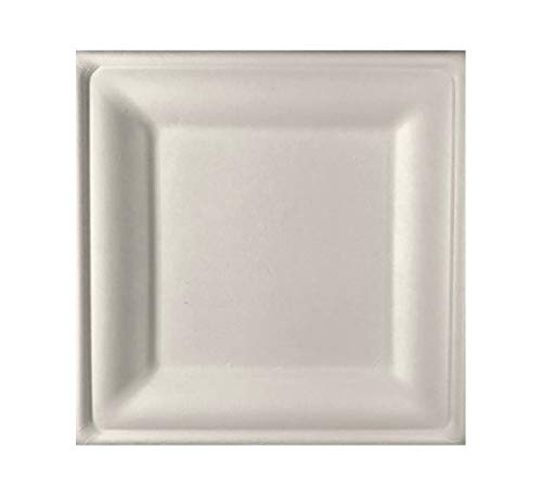 Square Biodegradable Disposable Bagasse Plates by Conscious Products [125 Count, 8-Inch size]