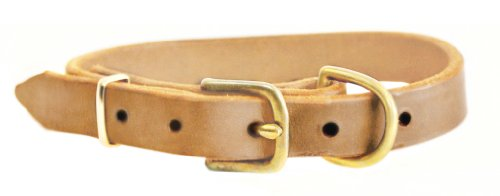"Dean and Tyler ""B and B"", Basic Leather Dog Collar with Solid Brass Hardware – Tan – Size 8 by 3/4-Inch – Fits Neck 6-Inch to 10-Inch"