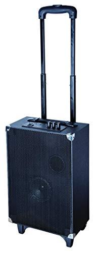 Sylvania Tailgate Bluetooth Speaker with LED Lights! (Renewed)
