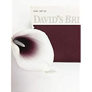 Angel Isabella, LLC 20pc Set of Keepsake Artificial Real Touch Calla Lily with Small Bloom Perfect for Making Bouquet, Boutonniere,Corsage (Picasso Wine(Burgundy)) 80