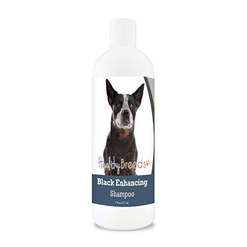 Healthy Breeds Black Coat Color Enhancement Shampoo for Black or Darker Color Fur with Aloe and Vitamin E 8oz