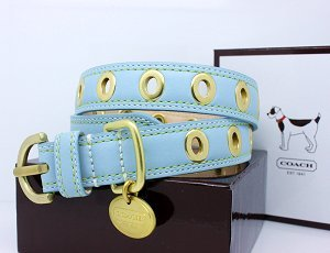 "COACH Gold Grommet Turquoise Leather Collar with Engraveable Charm 60112 Limited Edition - Gold/Turquoise, X-Large (22""-26"")"