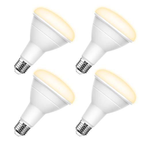 Led 13 Watt Br30 Light Bulb in US - 2