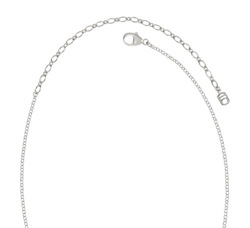 Lucia Costin Silver, Black, Brown Crystal Necklace with Delicate Flowers