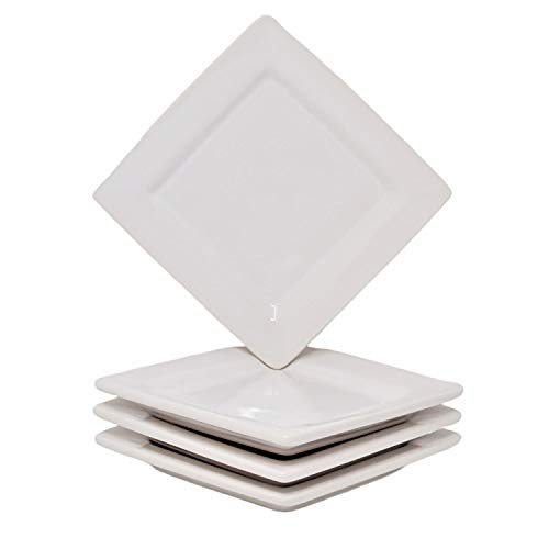 Small Square Appetizer Plates Set of 4 ()