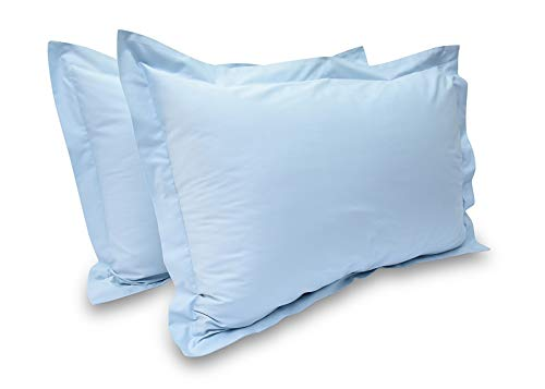 Prince Lionheart Inc 100% Egyptian Cotton Solid Pattern 2 Piece Pillowshams 600 Thread Count (Queen Size, Light Blue Color) (Powder Blue Pillowcases)