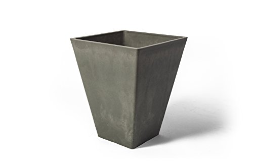 Algreen 17629 Valencia Square, 11.5 by 14-Inch Charcoal